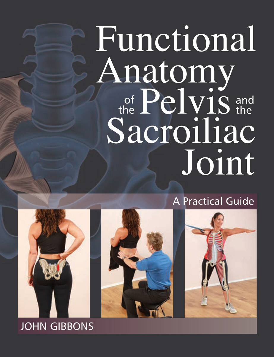 Functional Anatomy Of The Pelvis And The Sacroiliac Joint John